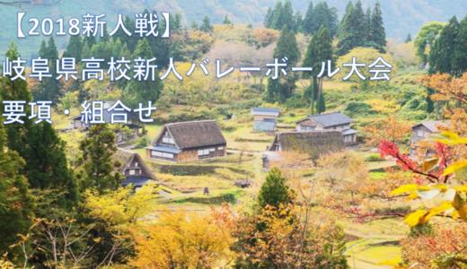 【2018新人戦】岐阜県高校新人バレーボール大会 要項・組合せ