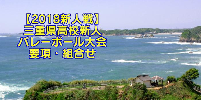 【2018新人戦】三重県高校新人バレーボール大会 要項・組合せ