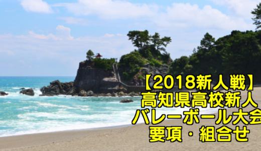 【2018新人戦】高知県高校新人バレーボール大会 要項・組合せ