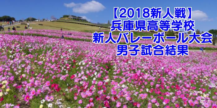 【2018新人戦】兵庫県高等学校新人バレーボール大会 男子試合結果