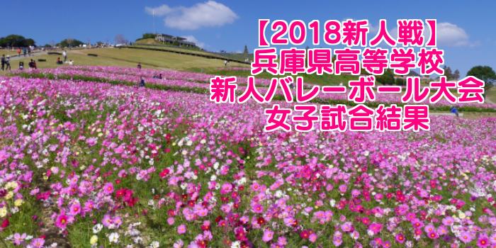 【2018新人戦】兵庫県高等学校新人バレーボール大会 女子試合結果