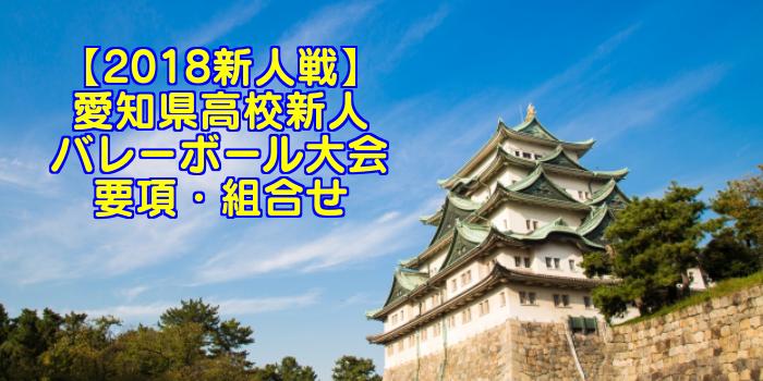 【2018新人戦】愛知県高校新人バレーボール大会 要項・組合せ
