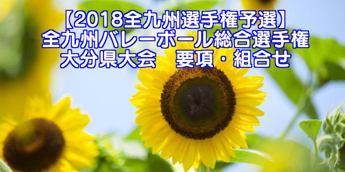 【2018全九州選手権予選】全九州バレーボール総合選手権 大分県大会 要項・組合せ