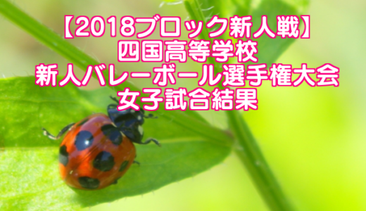 【2018ブロック新人戦】四国高等学校新人バレーボール選手権大会 女子試合結果