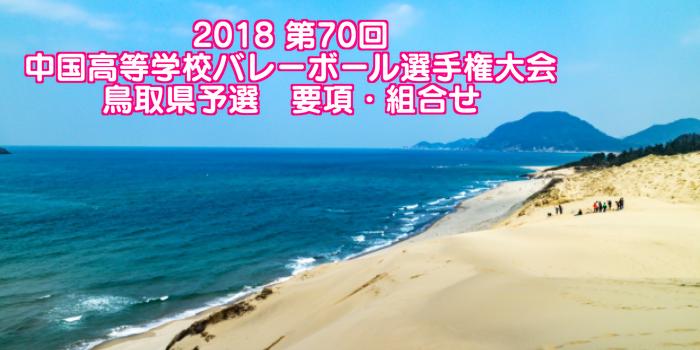 2018 第70回中国高等学校バレーボール選手権大会 鳥取県予選 要項・組合せ