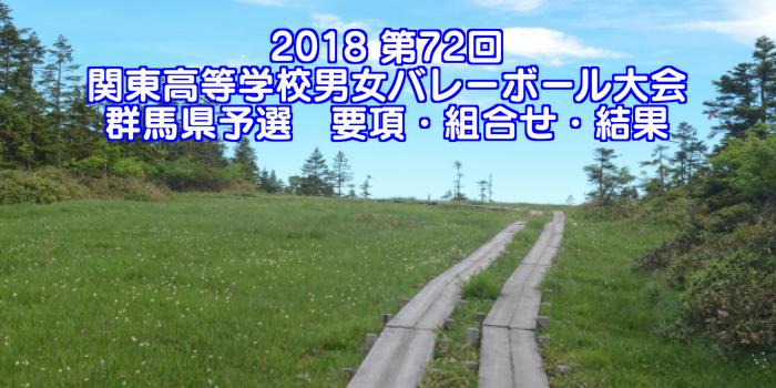 2018 第72回関東高等学校男女バレーボール大会 群馬県予選 要項・組合せ