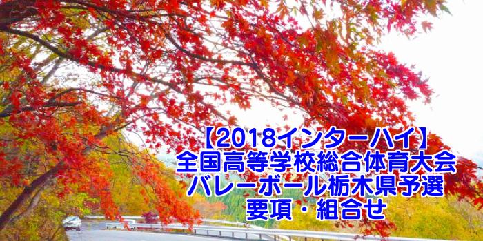 【2018インターハイ】全国高等学校総合体育大会 バレーボール栃木県予選 要項・組合せ