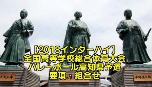 【2018インターハイ】全国高等学校総合体育大会 バレーボール高知県予選 要項・組合せ