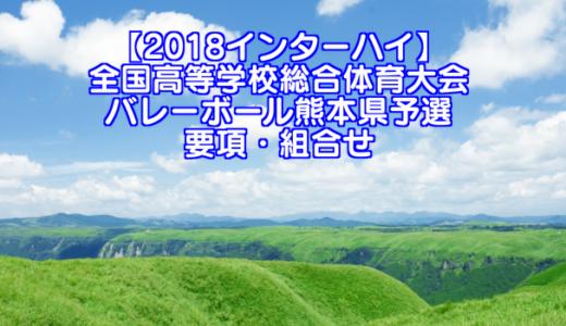 【2018インターハイ】全国高等学校総合体育大会 バレーボール熊本県予選 要項・組合せ