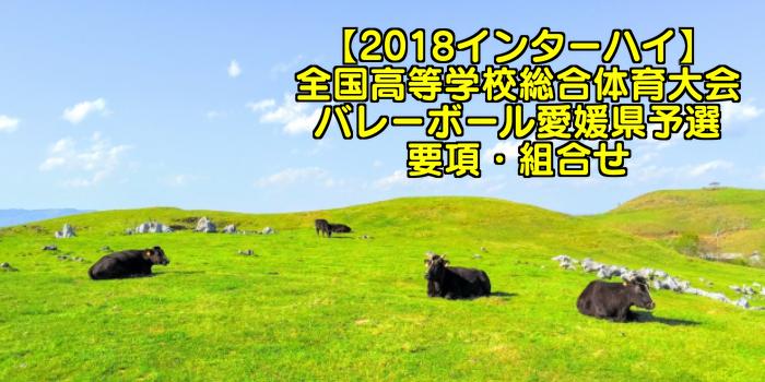 【2018インターハイ】全国高等学校総合体育大会 バレーボール愛媛県予選 要項・組合せ