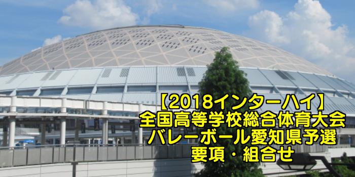 【2018インターハイ】全国高等学校総合体育大会 バレーボール愛知県予選 要項・組合せ