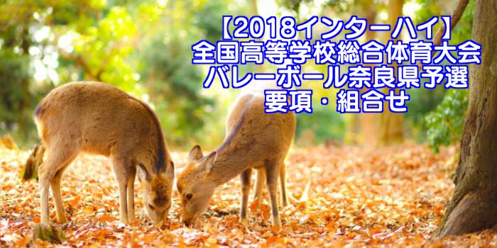 【2018インターハイ】全国高等学校総合体育大会 バレーボール奈良県予選 要項・組合せ