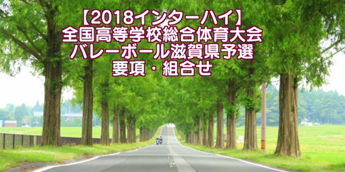 【2018インターハイ】全国高等学校総合体育大会 バレーボール滋賀県予選 要項・組合せ