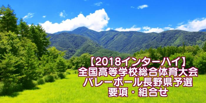 【2018インターハイ】全国高等学校総合体育大会 バレーボール長野県予選 要項・組合せ