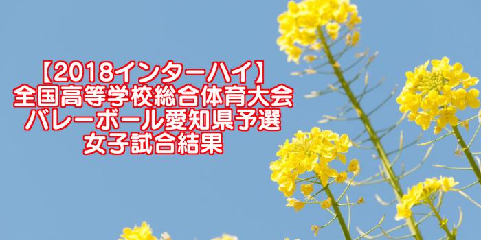 【2018インターハイ】全国高等学校総合体育大会 バレーボール愛知県予選 女子試合結果