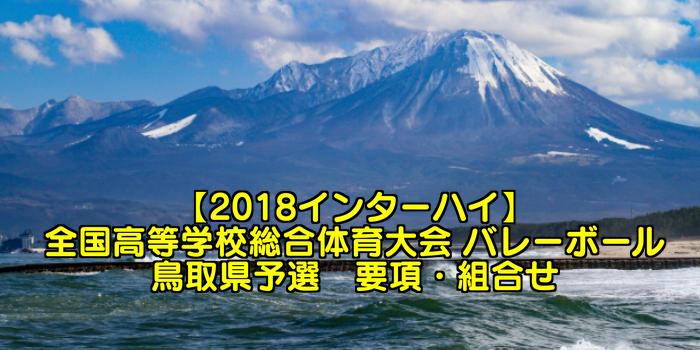 【2018インターハイ】全国高等学校総合体育大会 バレーボール鳥取県予選 要項・組合せ