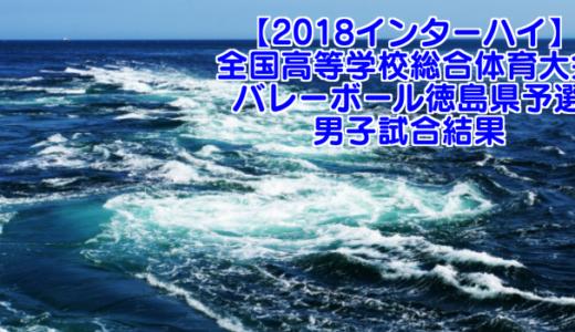 【2018インターハイ】全国高等学校総合体育大会 バレーボール徳島県予選 男子試合結果