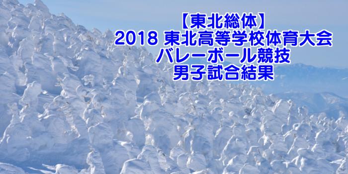 【東北総体】2018 東北高等学校体育大会バレーボール競技 男子試合結果