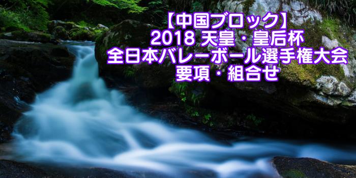 【中国ブロック】2018 天皇・皇后杯 全日本バレーボール選手権大会 要項・組合せ