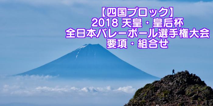 【四国ブロック】2018 天皇・皇后杯 全日本バレーボール選手権大会 要項・組合せ