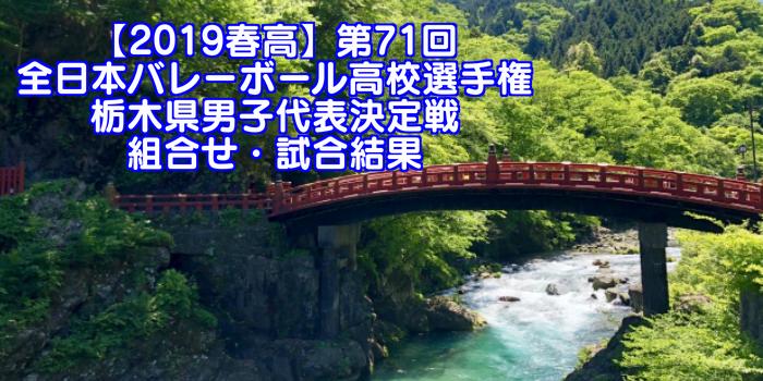【2019春高】第71回全日本バレーボール高校選手権 栃木県男子代表決定戦 組合せ・試合結果