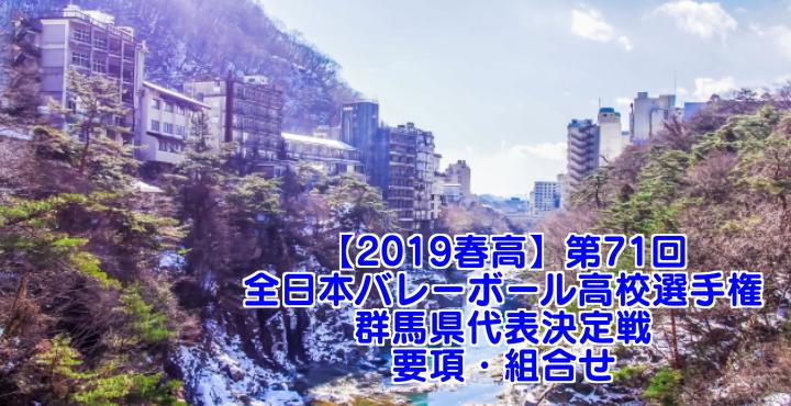 【2019春高】第71回全日本バレーボール高校選手権 群馬県代表決定戦 要項・組合せ