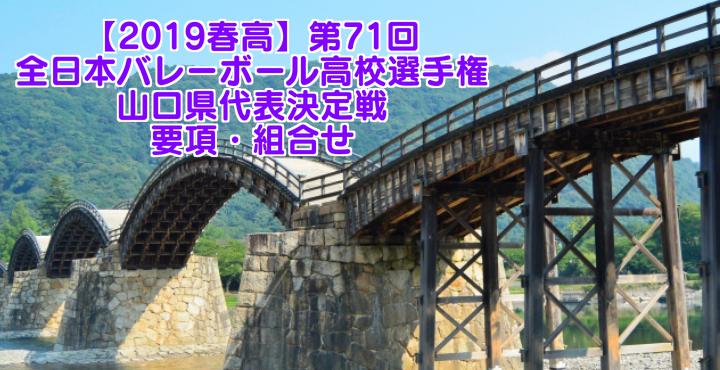 【2019春高】第71回全日本バレーボール高校選手権 山口県代表決定戦 要項・組合せ