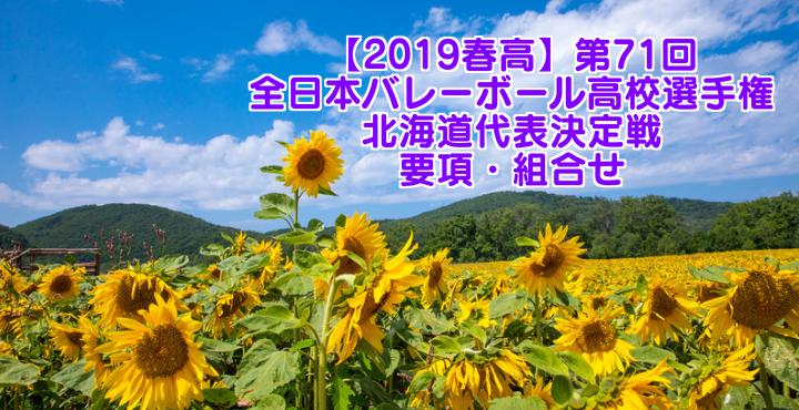 【2019春高】第71回全日本バレーボール高校選手権 北海道代表決定戦 要項・組合せ