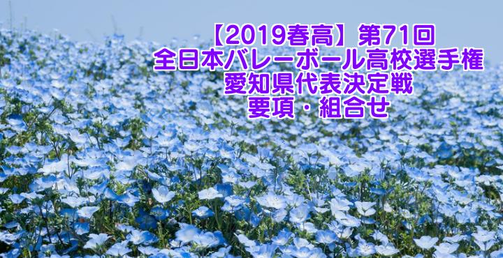 【2019春高】第71回全日本バレーボール高校選手権 愛知県代表決定戦 要項・組合せ