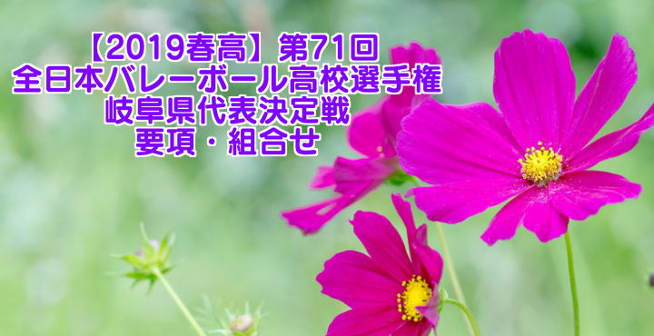【2019春高】第71回全日本バレーボール高校選手権 岐阜県代表決定戦 要項・組合せ