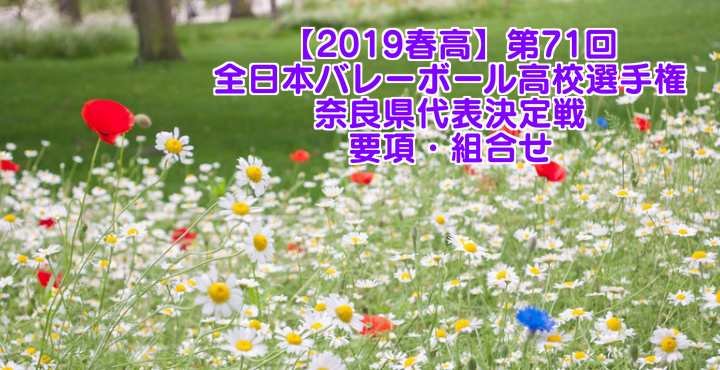 【2019春高】第71回全日本バレーボール高校選手権 奈良県代表決定戦 要項・組合せ