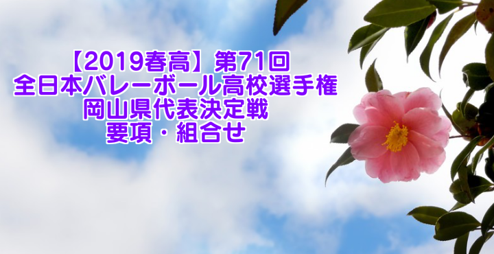 【2019春高】第71回全日本バレーボール高校選手権 岡山県代表決定戦 要項・組合せ