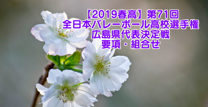 【2019春高】第71回全日本バレーボール高校選手権 広島県代表決定戦 要項・組合せ
