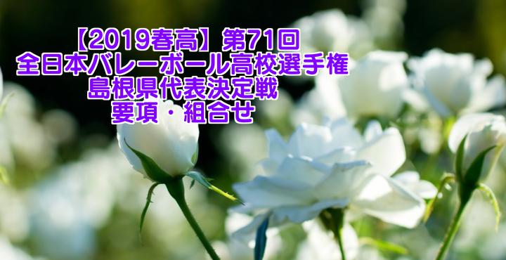 【2019春高】第71回全日本バレーボール高校選手権 島根県代表決定戦 要項・組合せ