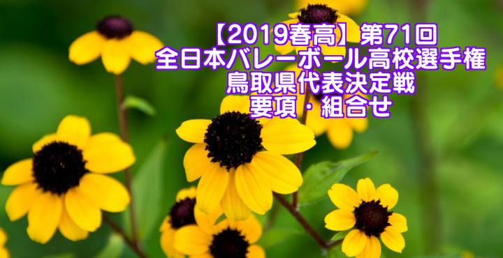 【2019春高】第71回全日本バレーボール高校選手権 鳥取県代表決定戦 要項・組合せ