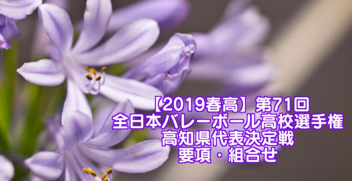 【2019春高】第71回全日本バレーボール高校選手権 高知県代表決定戦 要項・組合せ