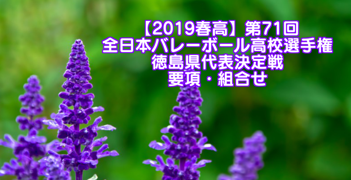 【2019春高】第71回全日本バレーボール高校選手権 徳島県代表決定戦 要項・組合せ