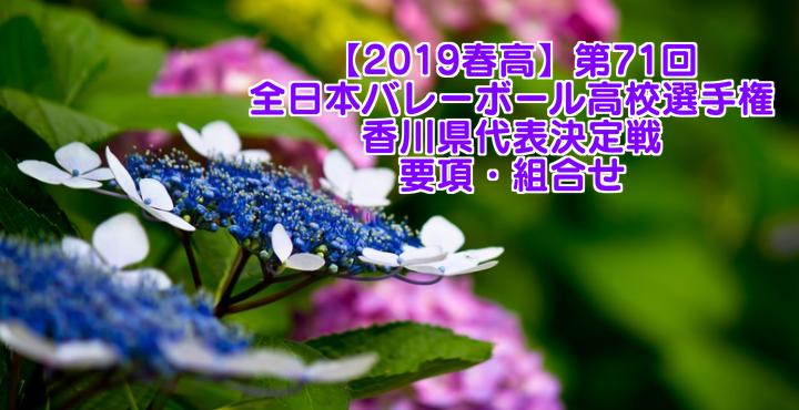 【2019春高】第71回全日本バレーボール高校選手権 香川県代表決定戦 要項・組合せ