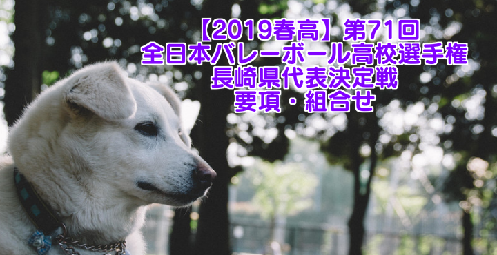 【2019春高】第71回全日本バレーボール高校選手権 長崎県代表決定戦 要項・組合せ