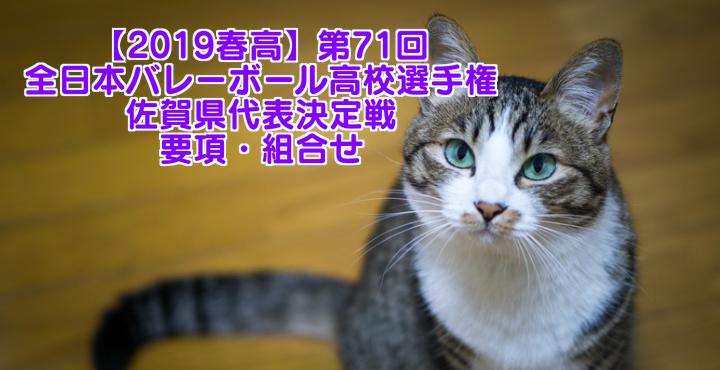 【2019春高】第71回全日本バレーボール高校選手権 佐賀県代表決定戦 要項・組合せ