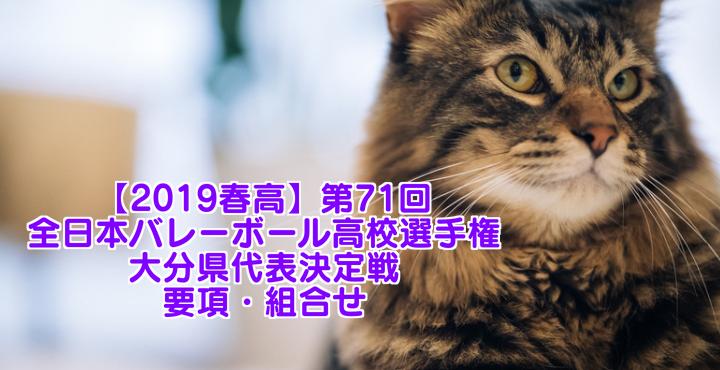 【2019春高】第71回全日本バレーボール高校選手権 大分県代表決定戦 要項・組合せ