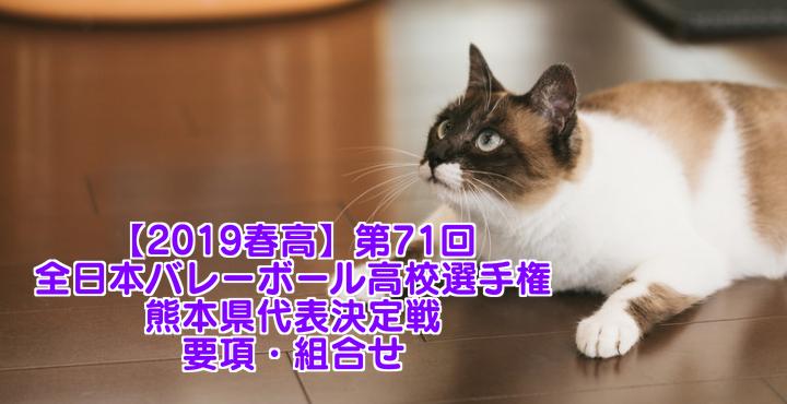 【2019春高】第71回全日本バレーボール高校選手権 熊本県代表決定戦 要項・組合せ