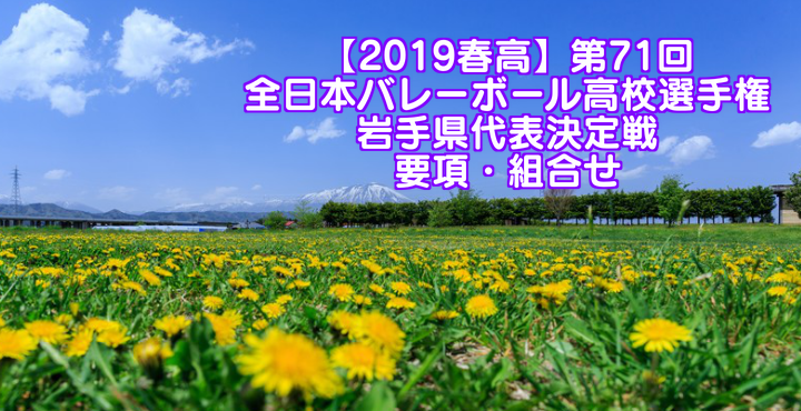 【2019春高】第71回全日本バレーボール高校選手権 岩手県代表決定戦 要項・組合せ