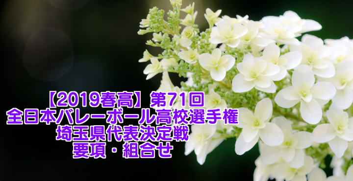 【2019春高】第71回全日本バレーボール高校選手権 埼玉県代表決定戦 要項・組合せ