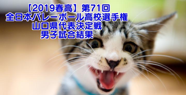 【2019春高】第71回全日本バレーボール高校選手権 山口県代表決定戦 男子試合結果