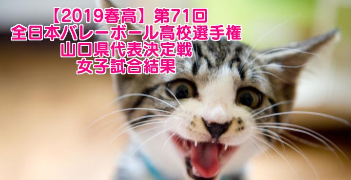【2019春高】第71回全日本バレーボール高校選手権 山口県代表決定戦 女子試合結果