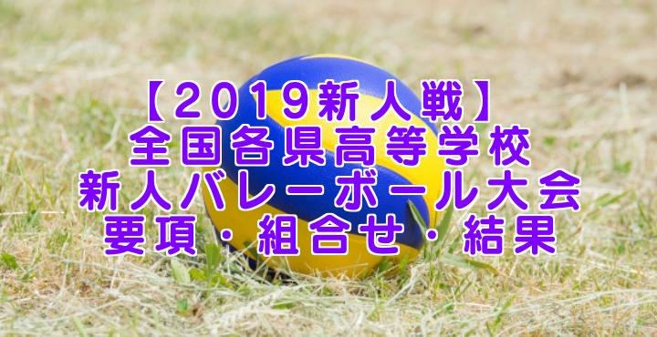 【2019新人戦】 全国各県高等学校新人バレーボール大会 要項・組合せ・結果