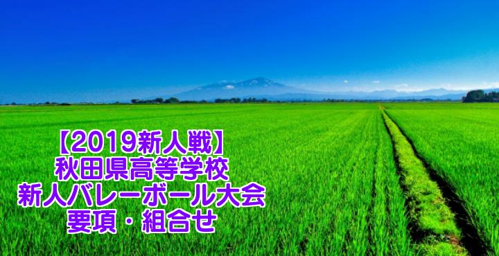 【2019新人戦】秋田県高等学校新人バレーボール大会 要項・組合せ