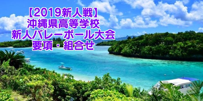 【2019新人戦】沖縄県高等学校新人バレーボール大会 要項・組合せ