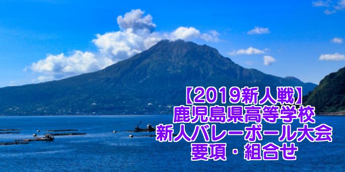 【2019新人戦】鹿児島県高等学校新人バレーボール大会 要項・組合せ